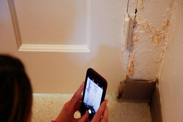 مهمانان ناخوانده روی دیوار های خانه که سلامت شما را نشانه می فرایند